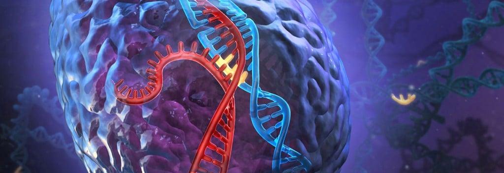 DNA_CRSIPR-Cas9_Therapeutics