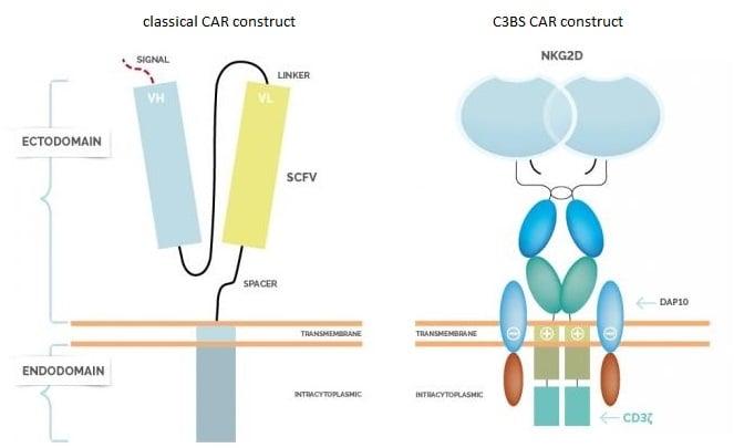 CAR technology using natural killer cells receptors. Source: Cardio3 Biosciences