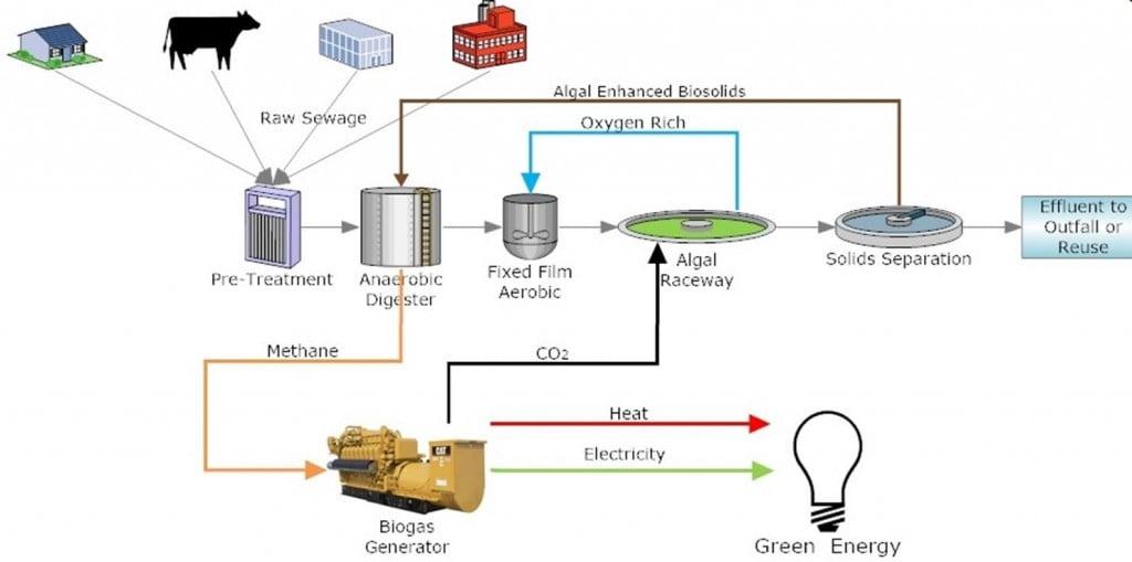 Aquanos_algae_biotech_scrubbing_water_remediation