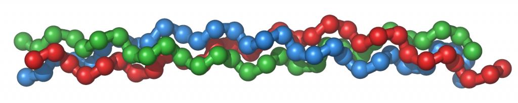 Collagentriplehelix