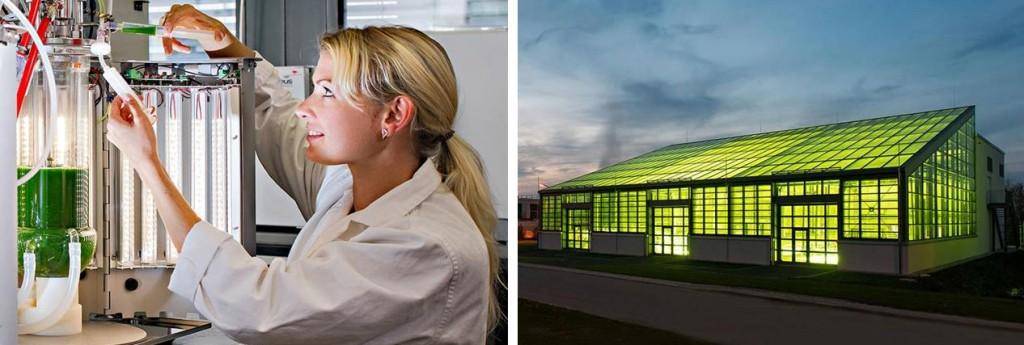 algae_tun_bavaria_aviation_review_biotech