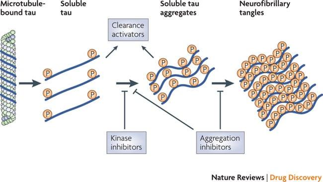 Tau aggregation inhibitors