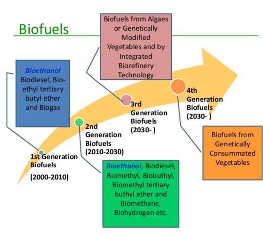 biofiel