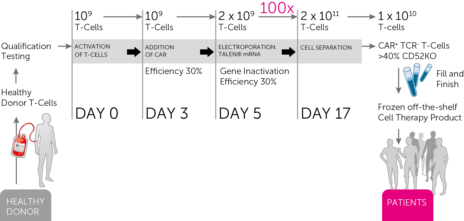 The UCART Manufacturing Process (Source: Cellectis)