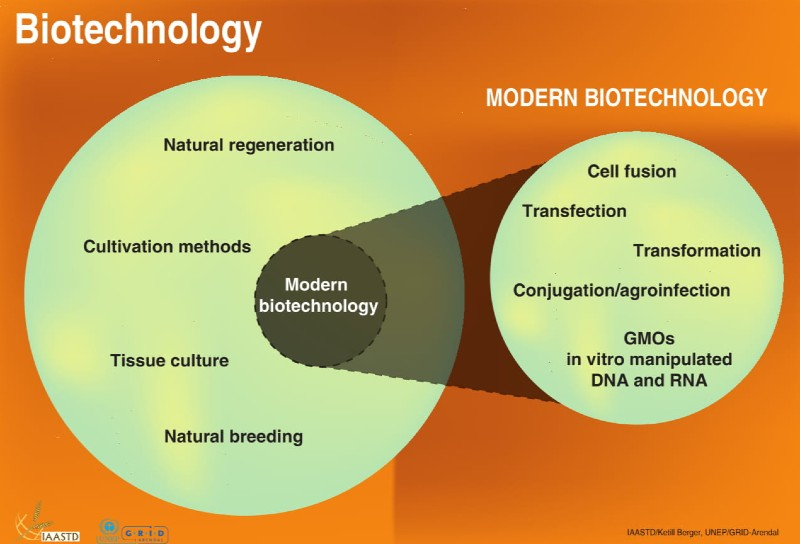 genentech history biotechnology genetic engineering