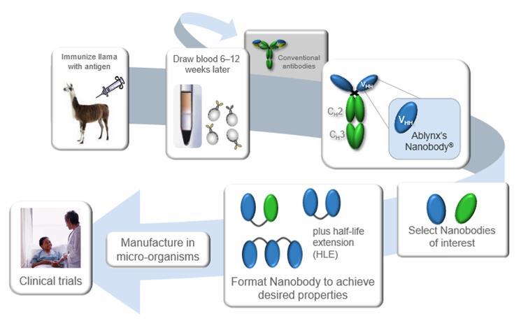 ablynx_nanobody_llama_rsv_infant_trial_manufacturing.jpg