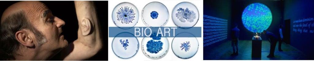 bioart_eduardo_kac_biotech