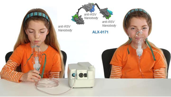 nebulizer_ablynx_trivalent_antibody_rsv_infection.png