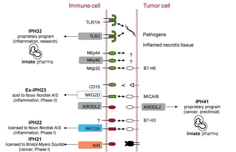 innate_pharma_pipeline_checkpoint_cancer_immunooncology_sanofi_bms