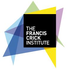 francis_crick_institute_human_embryos_research_CRISPR_EU