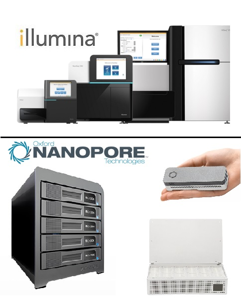 illumina_oxford_nanopore_lawsuit_patent_porin_Mycobaterium_smegmatis_minion_promethion_gridion_miniseq