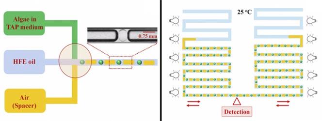 microfluidic_microbiome_millidrop_seventure