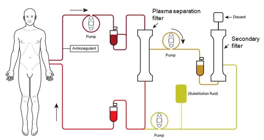 nejm_tpe_plasmaphoresis_thrombocytopenia_ablynx_nanobodies_hercules