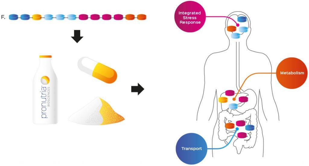 pronutria_nestle_health_sciences_food_therapeutics_nutraceuticals_amino_acids_flagship_ventures