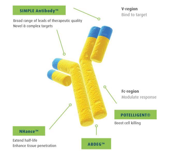 simple_antibody_leo_pharma_argen_x_skin_inflammatory