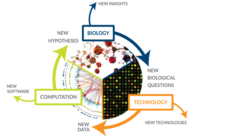 systems_biology_jens_nielsen_cell_factories_chalmers_novozymes