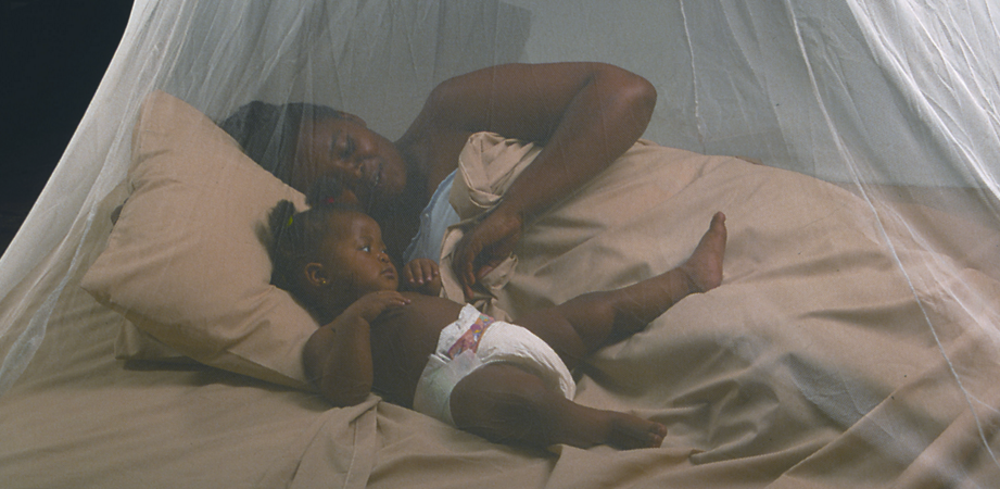 zika_virus_infection_mosquito_net_gsk-cdc_microcephaly