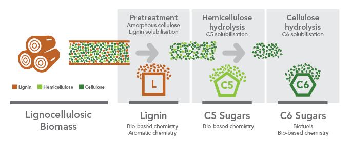 deinove_deinococci_green_chemistry_arbiom_biomass_pretreatment_lignin_optafuel_biomethodes_bioskog_synbio