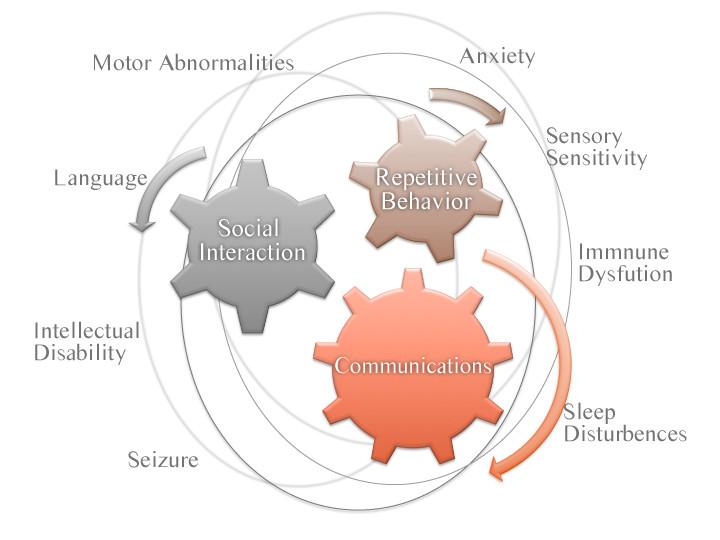 autism_fragile_x_syndrome_review_asd_biotech