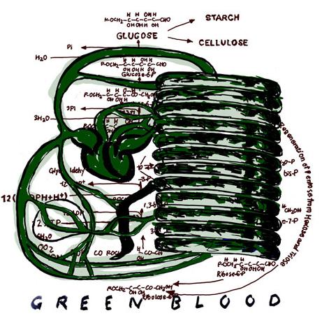 thomas_feurenstein_bioart_green_blood_biotech