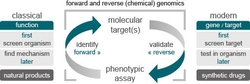 entrechem drug discovery modern target classical function