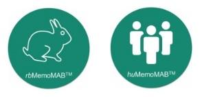 memo therapeutics memomab antibody discovery