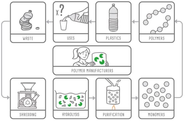 plastic recycling biotech enzymes carbios