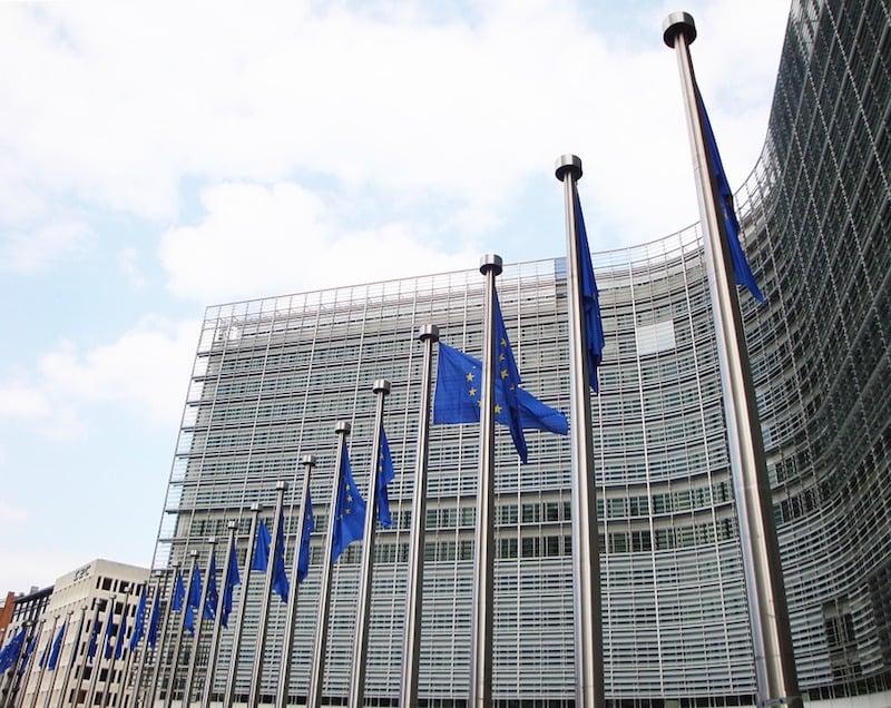 Figure 1. The European Commission