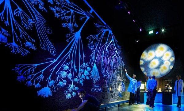 Micropia exhibition