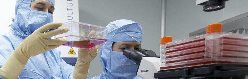 Researchers at TiGenix