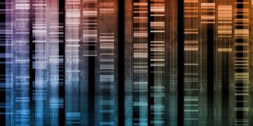 Genome Sequence - Human Genome Update Feature Header