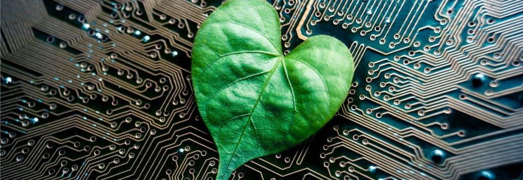 electronic plants e-plants bioelectronics Linköping