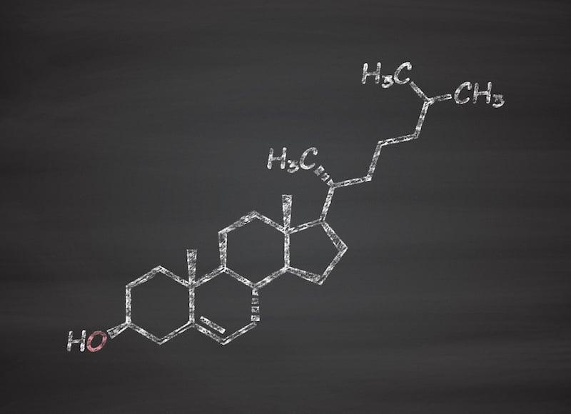 The lipid, cholesterol