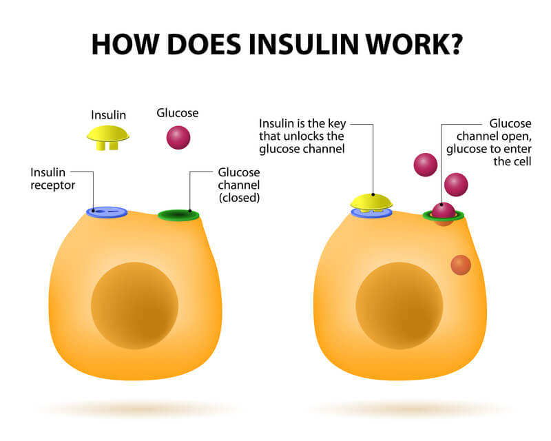 Diabetes-Insulin