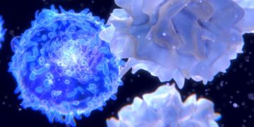checkpoint inhibitors ose immunotherapeutics cancer cells