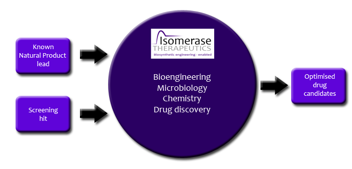 Isomerase Therapeutics-process