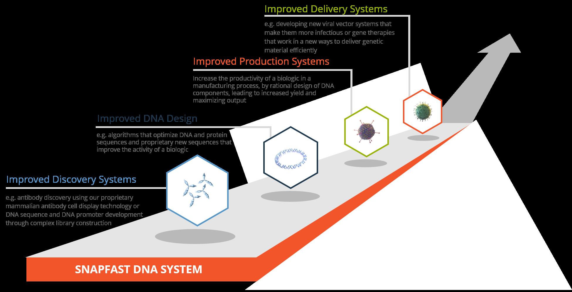 SNAPFAST DNA SYSTEM V6