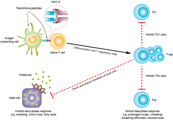 circassia pharmaceuticals allergy immunotherapy
