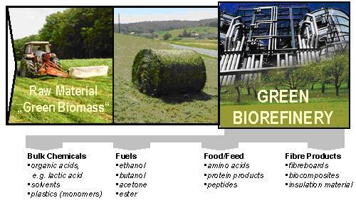 green biorefinery grass lactic acid