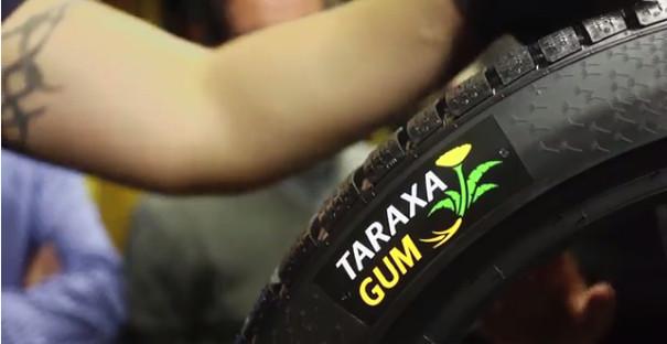 taraxagum dandelion rubber tires continental