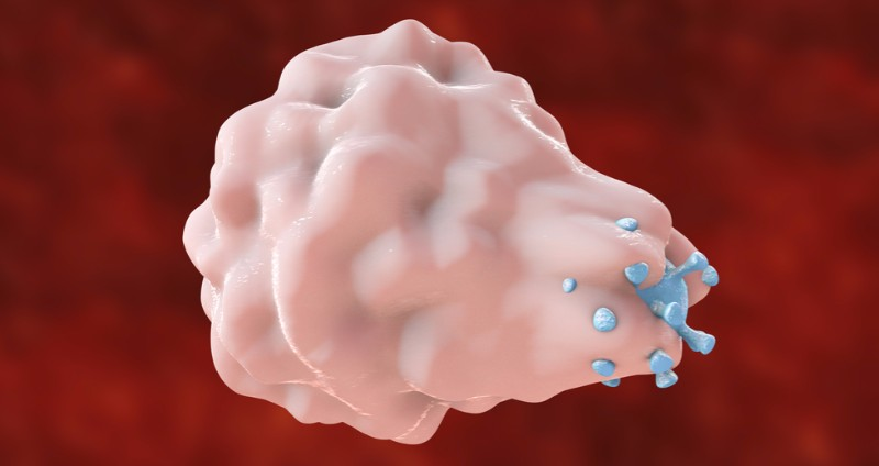 Masitinib is a tyrosine kinase inhibitor that targets mast cells and macrophages, immune cells that play a role in a wide range of conditions from oncology to inflammatory disease