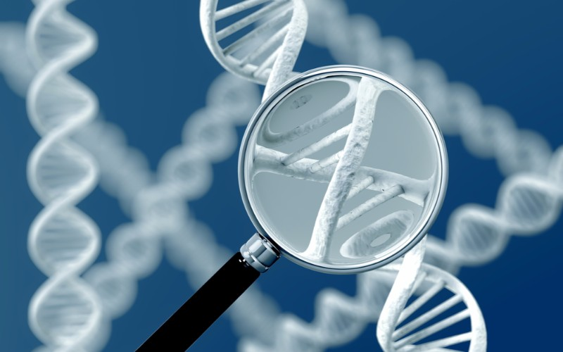 Scenic Biotech Genetic Switch Cancer Rare Disease