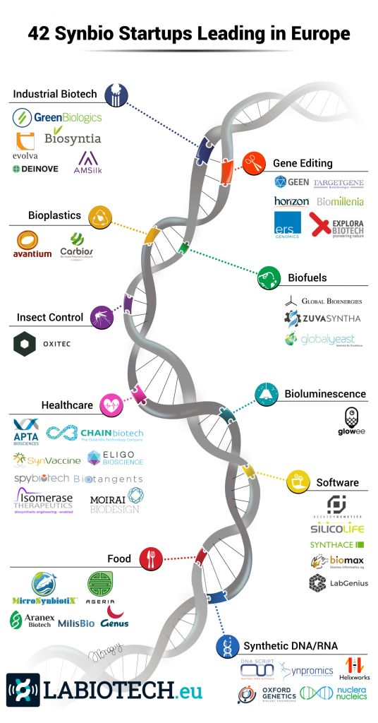 SynBio startups Europe infographic