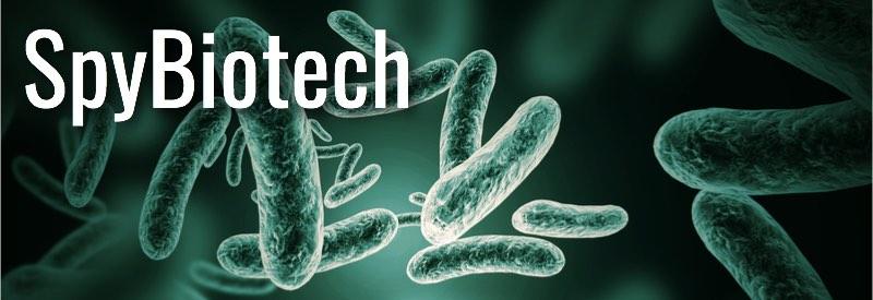 spybiotech