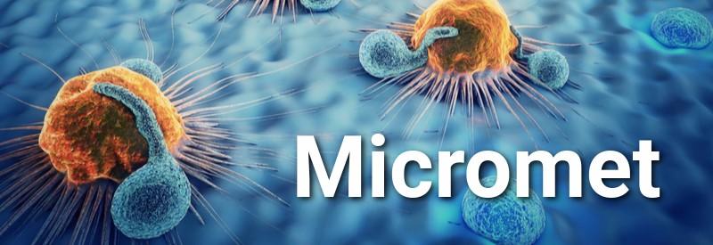 best biotech companies Europe Micromet