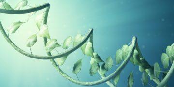 bayer ginkgo bioworks plant microbiome biotech