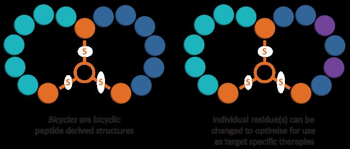 bicycle therapeutics bioverativ hemophilia