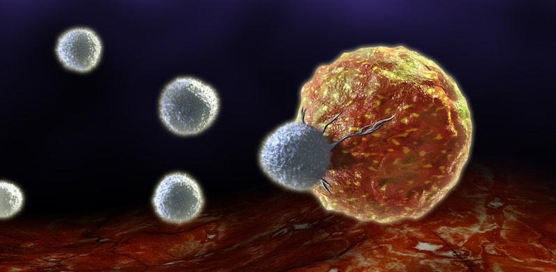 cell-medica-gregg-sando-car-t1