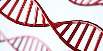 curevac genmab mRNA cancer antibody