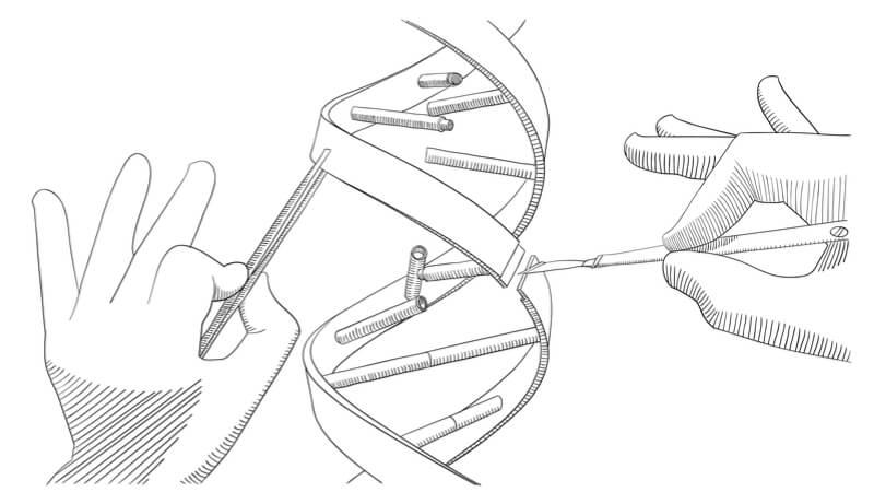 synbio synthetic biology cambridge